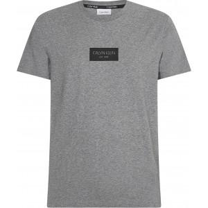 Calvin Klein T-Shirt Γκρί 6484P4A